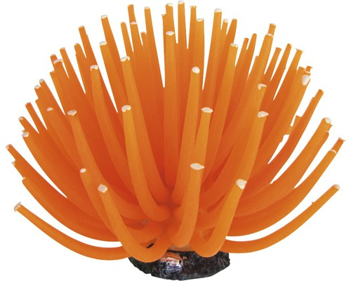 ORBIT Smiling Coral Orange, 13cm