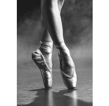 Poster Pointe Shoes 50x70cm
