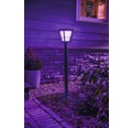 Pollare PHILIPS Hue Econic white and color ambiance 15W 1150lm IP44 100x16,3cm svart